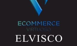 Download Corso Ecommerce Virtuoso – Elvisco